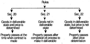 Sale of Goods Act, 1930 – CS Foundation Business Law Notes IMG 4